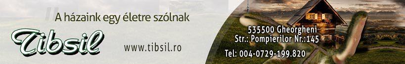 2-819x130-kisujsag-reklam-tibsil