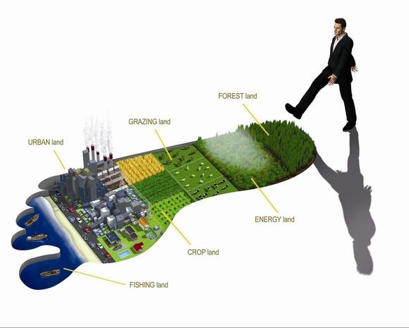 Global_Footprint