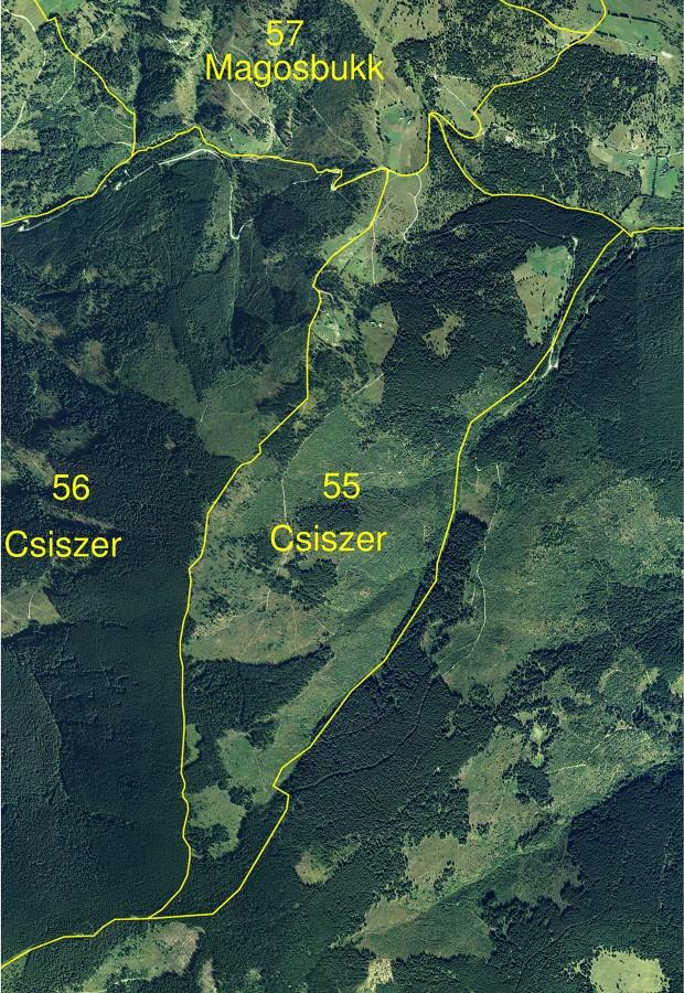 csiszer_55a