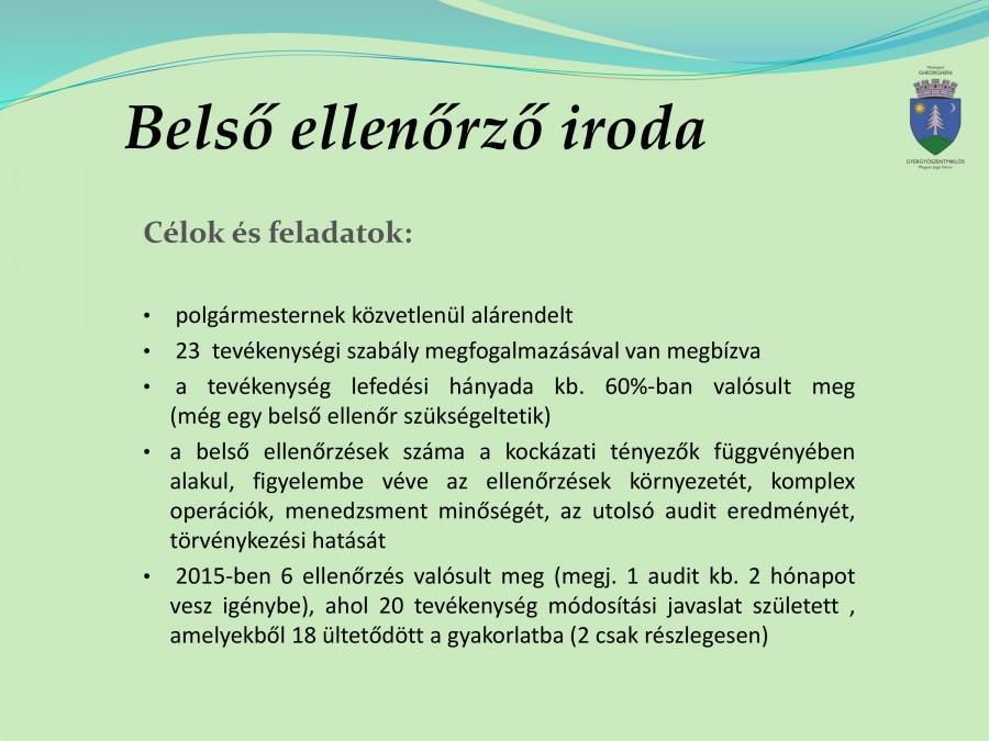 tevekenyseg beszamolo 2015-8