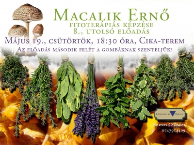 macalik8