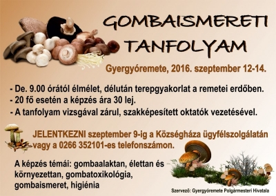 gomba_tanfolyam