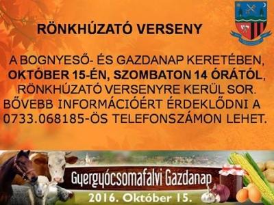 csomafalva_bognyeso_gazdanap1