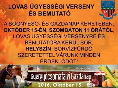 csomafalva_bognyeso_gazdanap3