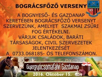 csomafalva_bognyeso_gazdanap5