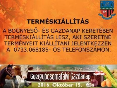 csomafalva_bognyeso_gazdanap_termes