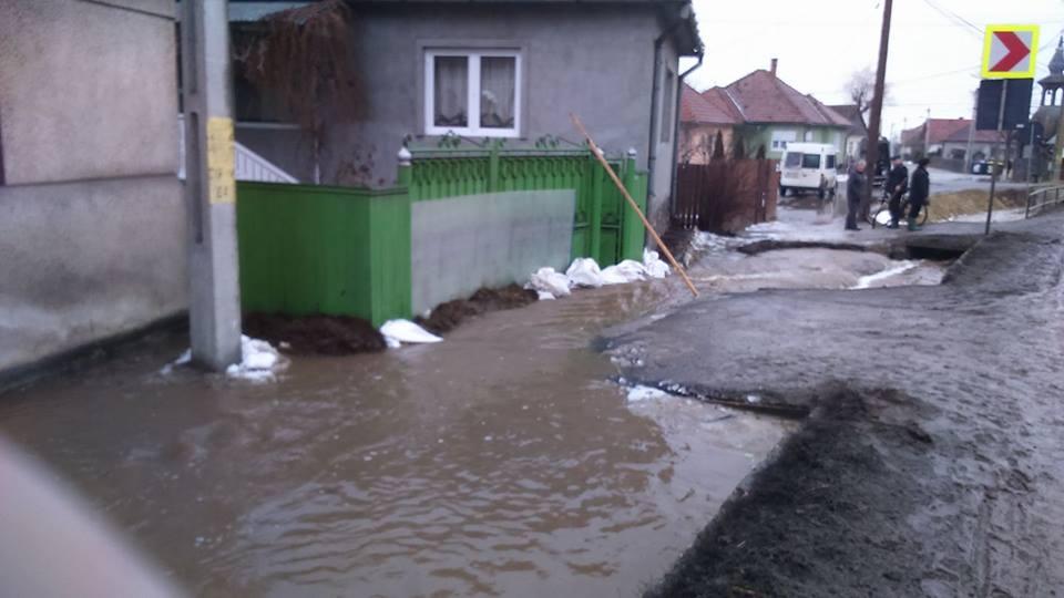 arviz_szarhegy