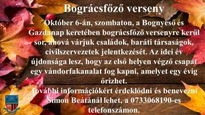 bognyeso1