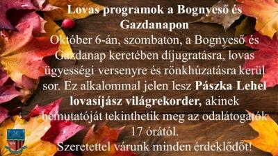 bognyeso5