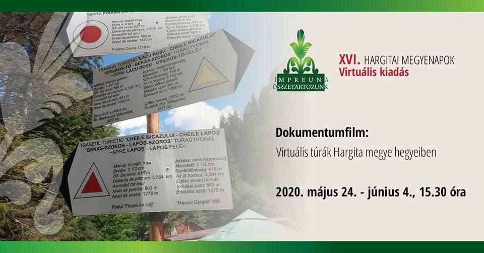 virtualis_turak